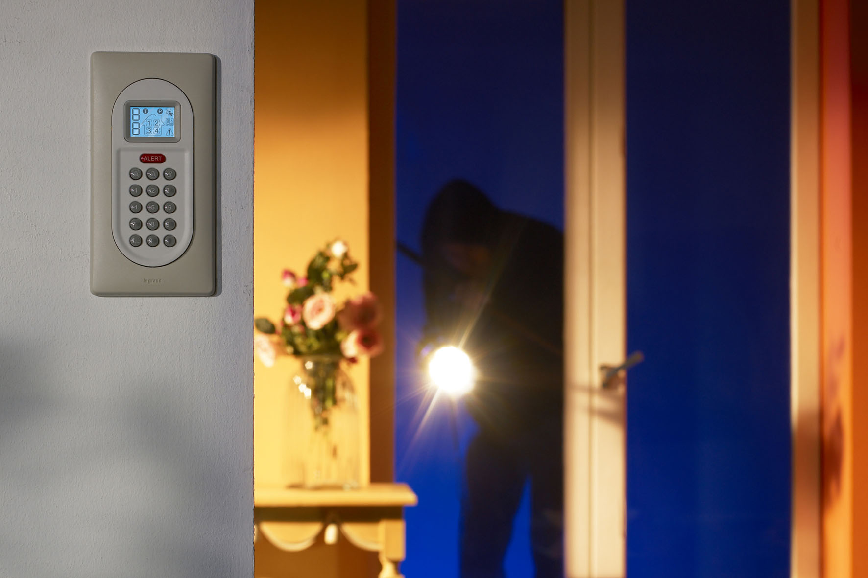 alarme intrusions